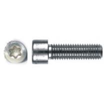 25 Stück Gewindefurchende Schrauben Zylinderkopf DIN 7500 A2 M4X8 E Torx
