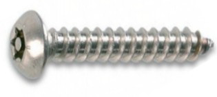 10 Stück Sicherheitsschrauben Linsenkopf A2 4,2X13 Torx+Pin
