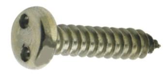 10 Stück Zweilochschrauben Linsenkopf A2 4,8X38 inkl.Bit SP-10